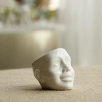 Wholesale Creative Skulls Flowerpot Home Decoration Flower Pots For Planters Garden Desktop Decor