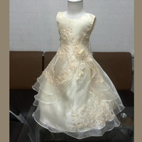 big glamour - Factory Glamour Dress Girl Party Dress Organza Embroidery Champagne Flower Girl Dress Big Size Kids Dresses For Girls hot sale