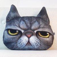 Wholesale Creative Cartoon pillow cushion sofa cushions office lumbar cushions and washable bed pillow cat pillow cushions