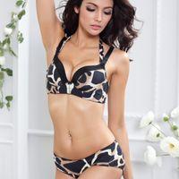 Wholesale Sexy bra set leopard women bra set sosten underwear women leopard bra and panty push up bra set sexy lingerie A B C cup