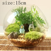 bamboo plant stands - Terrarium Vase Round Vase Flower Plant Stand Glass Vase Hydroponic Container Home Office Wedding Party Decoration psc