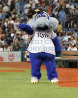 baseball fancy dress - Tampa Bay Devil Rays Raymond Mascot Costume Adult Baseball Sport Theme Cartoon Character Mascotte Fancy Dress Kits for Carnival