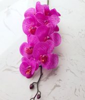 Wholesale 50p Artificial Butterfly Orchids Real Touch Flowers Latex Phalaenopsis Orchid Orchids for Wedding Centerpieces Photograph Props