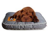 Wholesale BLOBLO Washable High Art Pet Moistureproof Mattresses for Summer Dog Mat Colors Optional