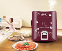 Wholesale mini electric cooker L multifunction electric cooker special offer dormitory office person
