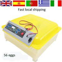 automatic chicken eggs - Full automatic V eggs DC Power mini egg Incubator for sale CE certificate HT