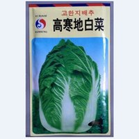 alpine bag - Vegetable seeds Alpine cabbage import cabbage cabbage adaptability wide strong disease resistance g bag