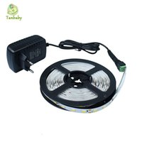 Wholesale Tanbaby Led strip light SMD M led DC12V flexible stripe rope lights not waterproof with power supply EU US