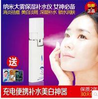 Wholesale Small dolphin t household Nano Spray moisturizing USB line charging beauty spray manufacturer