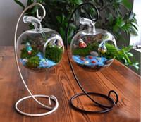 Wholesale 12cm Glass Hanging Planter Terrarium Container Vase Pot Home Garden Decoration hydroponic Landscape bottle New Clear Hanging Glass