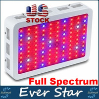 Wholesale 1000W Double Chips LED Grow Light nm Full Spectrum LED Grow Lights For Indoor Plants Flowering And Growing