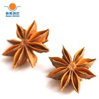 Wholesale dried organic star anise Chinese anise