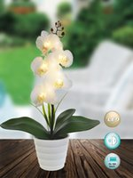 Wholesale Led light AA batteries operated orchid arragement for home decoration party supplies xmas decoration festival gift