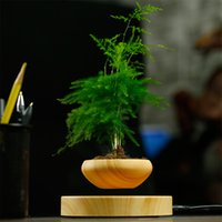 Wholesale 2016 Creative Floating Gardening Flower Pots Mini Wooden Flower Plants Pots in Home and Office Small Desktop Garden Pots Gardening Tool