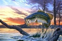 bass pictures - Canvas Print Oil painting Picture Animals largemouth bass on canvas x18inch