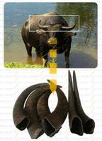 Wholesale genuine horn creaser horn folder scissor leather craft horn creaser HC01 Chorn Abone