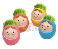 Wholesale REAL Grass New Arrival real planting grass little vase Good for gift decoration color egg baby