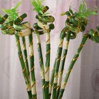 artificial lucky bamboo - 5pcs cm Floor Length Green Bonsai High Grade Artificial Plants Lucky Wealthy Bamboo Decorative Flower For Home Office Shop