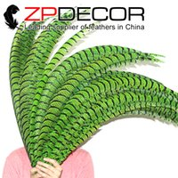 angels zebras - ZPDECOR cm inches Hand Select Dyed Green Zebra Lady Amherst Pheasant Tail Feathers for Angel Wings