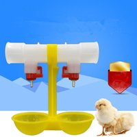 animal feeders - 500sets Chicken waterer Ball Hanging Cup Chicken drinking Poultry feed Animal feeder Yellow cm Express