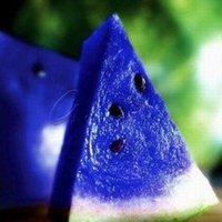 Wholesale Non Hybrid Purple Watermelon Seeds Fruit Juicy Drought Tolerant Plant