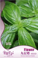 basil spices - 60 bag Basil Seeds Original Package Super Easy Grow Garden Bonsai Spice Seeds Ocimum basilicum bags per
