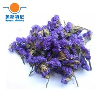 Wholesale 50g Chinese herb tea organic Forget me not Flower tea Myosotis Sylvatica tea