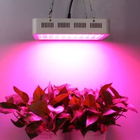 Wholesale 300w LED Grow Light Full Spectrum with Daisy Chain Indoor Plants Growing and Flowering Grow Lights