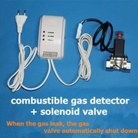auto gas sell - Combustible Gas Detector LPG Natural Gas Detector Best selling House Security Alarm Gas Leak Detector Linkage Solenoid Valve