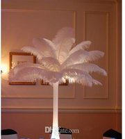 Wholesale 2016 hot cm wedding party table centerpieces decoration per natural multicolor ostrich feather plume craft supplies