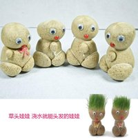 Wholesale Mini potted bonsai grass doll grass watering head on live grass plants grow