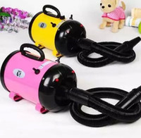 Wholesale Portable Dog Cat Pet Grooming Hair Dryer Pet Hairdryer Machine Colors V230V