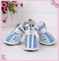 Wholesale Pet Puppy Dog Shoes Two Colors Cheap dog sell High Quality shoes a China dog toy shoe Suppliers