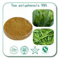 alcohol detox - Tea polyphenols Green Tea Extract Detox Slimming Anti oxidation anti tumor anti alcohol and protect the liver improve immunity Tea