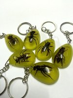 bee keychain - KEYCHAIN REAL BEE COOL GLOW LUCITE INSECT JEWELRY TAXIDERMY GIFT