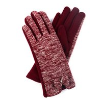 Wholesale Warm gloves Riding proof thermal insulation fleece gloves in winter No cashmere Ladies Gloves Touch screen hand gloves