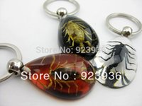 Wholesale souvenirs baby real insect black golden Scorpion Amber Keychain good promotion gift souvenir novelties coolest gift