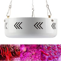 Wholesale UFO W Round LED Grow Light Red Blue AC V Indoor Hydroponic Plant Light Superior Yield Higher Quality Flowers Leds