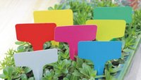 Wholesale 6 x10cm Plastic Plant T type Tags Markers Nursery Garden Labels Decoration