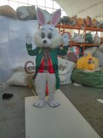 Wholesale Deluxe Wendell Rabbit Mascot Costumes Bunny Adult Mascot For Halloween Christmas Party Custom Made D0329