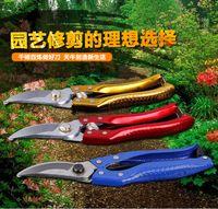 Wholesale 2016 High Carbon Steel Fruit Tree Pruning Shears Garden Tools Bonsai Pruners Garden Shears Gardening Secateurs Grafting Tool Scissors