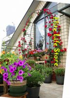 arched pergola - Pergola Iron Garden Arch Climbing Frame Loofah Rack Grape Rattan Rack Easy Assemblage cm