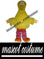 big bird pictures - Wonderful Popular Great Quality Deluxe Real Pictures Big Bird Mascot Costume Fancy Dress Halloween