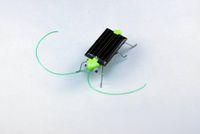 Wholesale 2015 New Cute Solar Toy Solar Grasshopper Solar Power Mini Toy Car Moving Racer