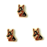 Wholesale dog charms3 floating charms for living locket