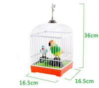 Wholesale Children electric acoustic small cage electric toy acoustic music toy movement parrot toy will call