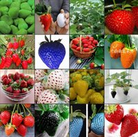 Wholesale On Sales kinds of strawberry seeds white yellow blue black red green great strawberries