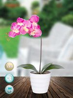 aa supplies - Led light AA batteries operated orchid flower arragement for home decoration party supplies xmas decoration festival gift