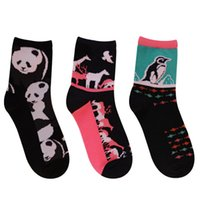 Wholesale New Arrival China Design Fashion lovers Cute Animals Cotton Socks simplicity Solid breathable Skateboard Hiphop Sport Socks