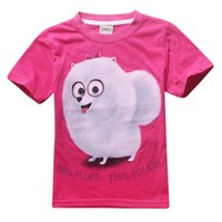 Wholesale 4 YThe Secret Life of Pets Cartoon Clothes short sleeve cotton Printed tee shirt for kids girls boys Summer new tee tops for children